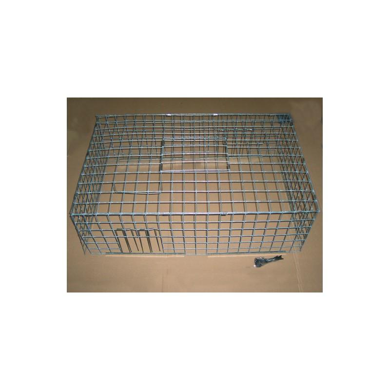 Cage à pigeons multi-capture