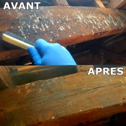 Nettoyage des fientes de pigeons sur une poutre en bois (avant/après)