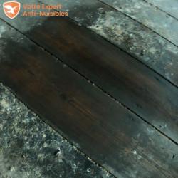 Appliquez simplement Selcleaning sans trop frotter : voilà le résultat efficace sur un parquet en bois.
