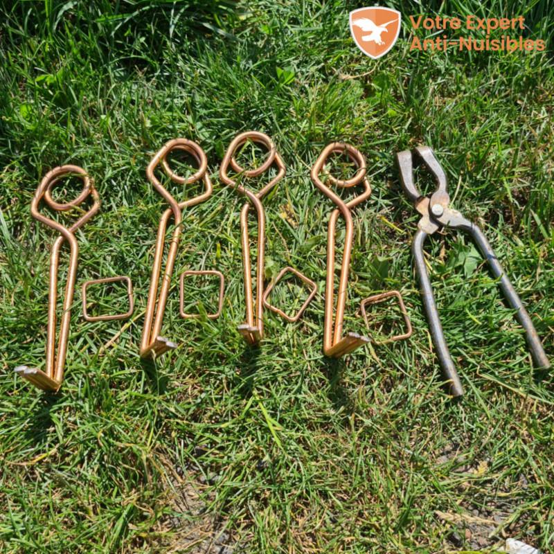 Lot de 4 pièges à taupes avec une clé et tendeurs.